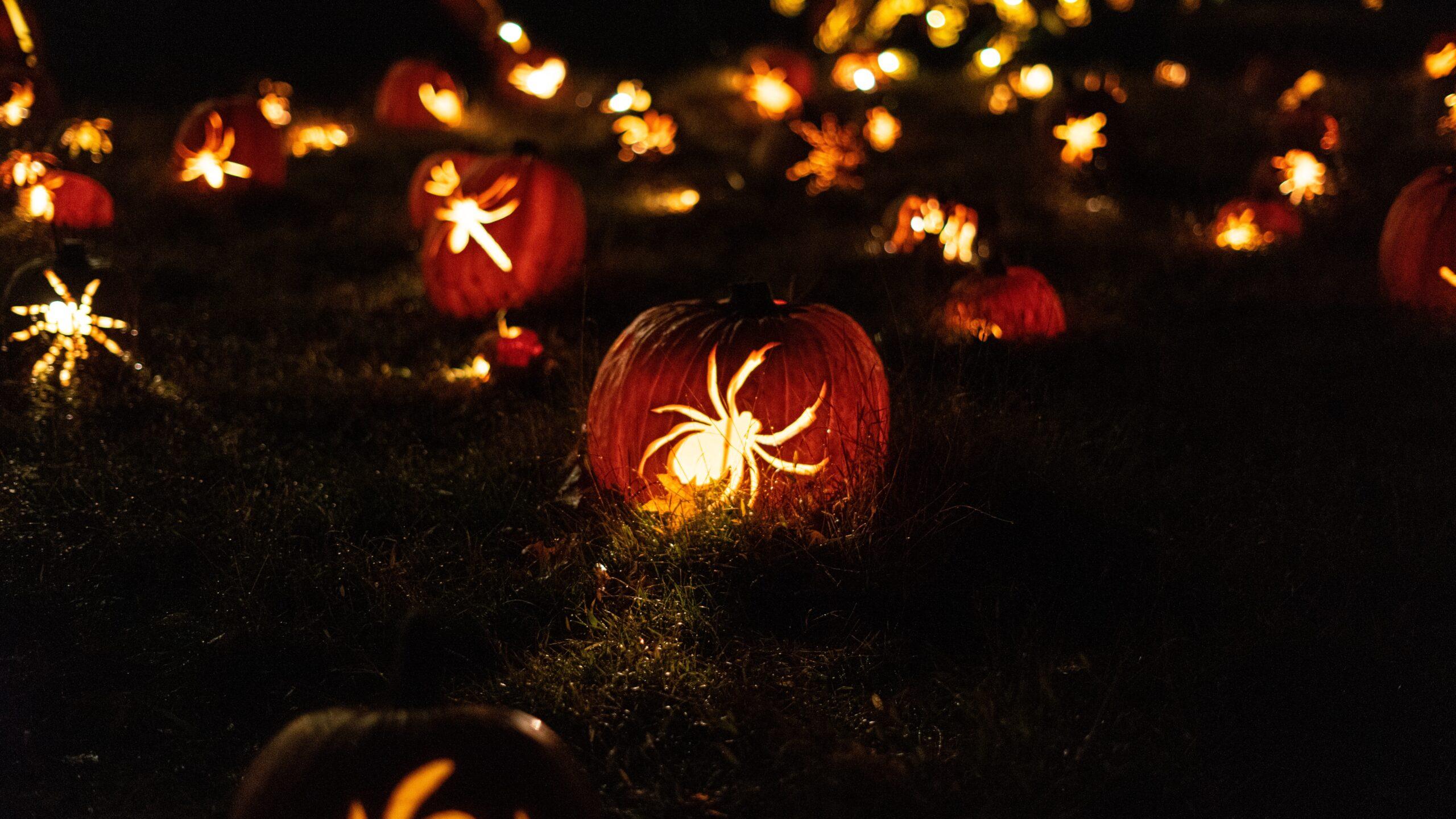 Straszne błędy w pozycjonowaniu - artykuł na Halloween